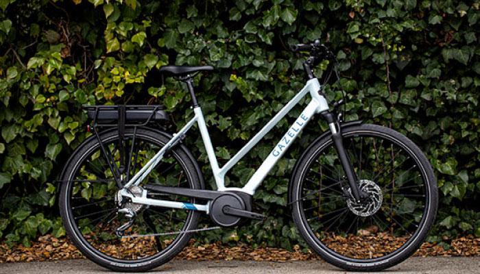 Gazelle Dynamic Options   The Garage OTR