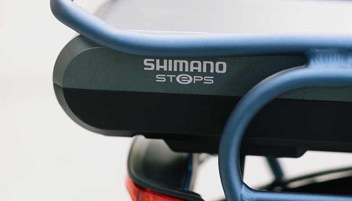 Electric Bike Batteries | The Garage OTR