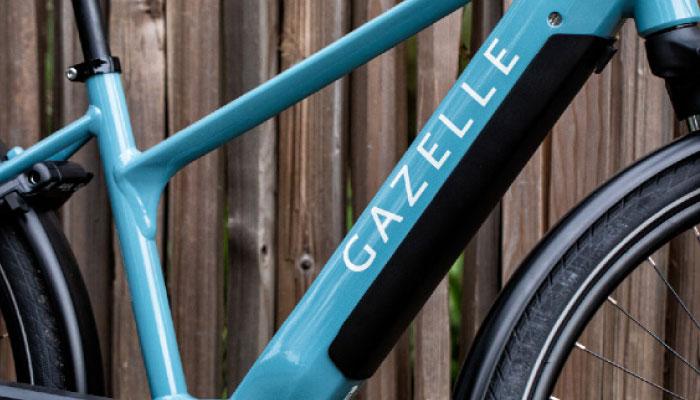 Gazelle Stealthy Integration | The Garage OTR
