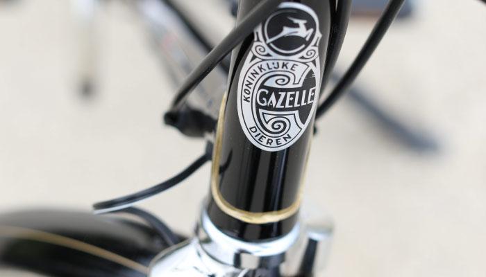 Gazelle Tour Populair Hand Painted Touches | The Garage OTR